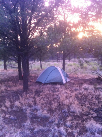 camping zion 2